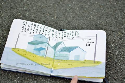美瑛之丘旅游景点攻略图