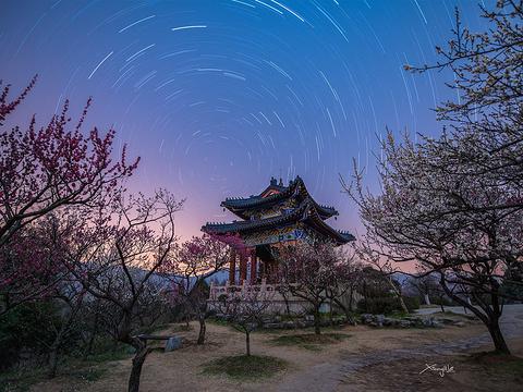梅花山景区旅游景点图片