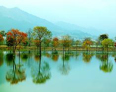 九资河--秋日的私语