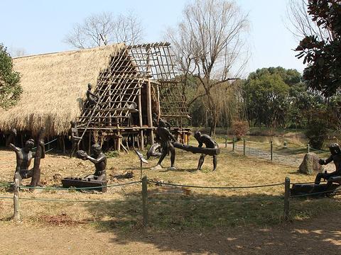 河姆渡遗址博物馆旅游景点图片