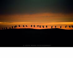 奈曼旗·原来你是这样的大漠--沙漠露营、周末自驾