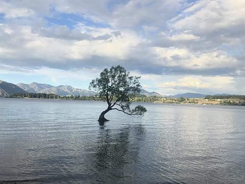 瓦纳卡湖旅游景点攻略图