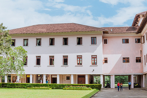 佩拉德尼亚大学