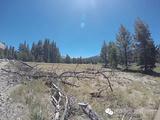 优胜美地国家公园旅游景点攻略图片