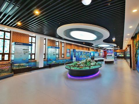 东极鱼市旅游景点图片