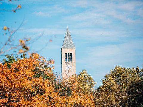 康奈尔大学旅游景点图片