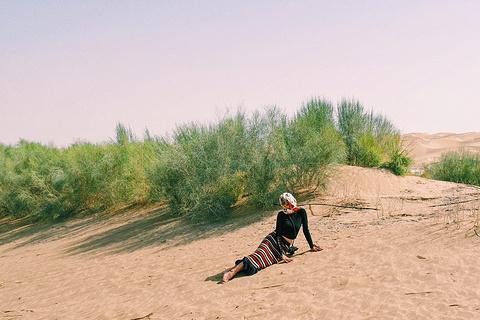 塔克拉玛干沙漠旅游景点攻略图