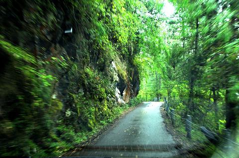 岗乡自然保护区旅游景点攻略图