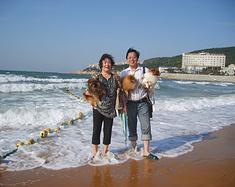 我和爸妈带着狗狗去威海旅游的记录之我们与狗狗
