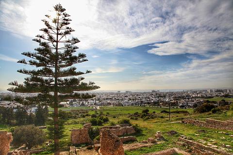迦太基城遗址旅游景点攻略图