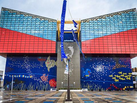 大阪海游馆旅游景点图片