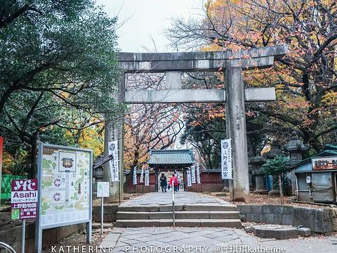 上野公园旅游景点图片
