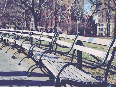 华盛顿广场公园旅游景点图片
