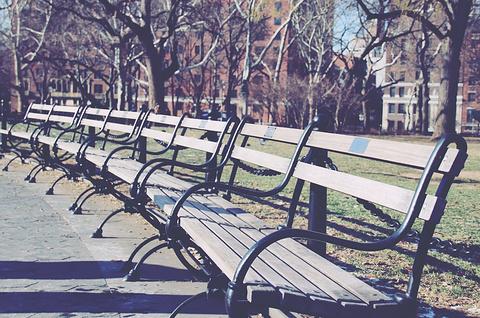 华盛顿广场公园的图片