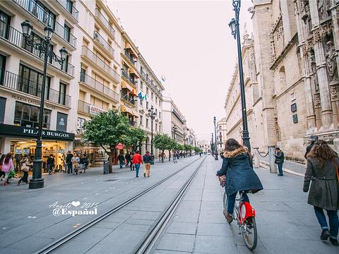 塞维利亚斗牛广场旅游景点图片
