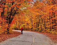 【冰原大道+枫叶大道=秋天的童话】加拿大西部和东部15天自驾游