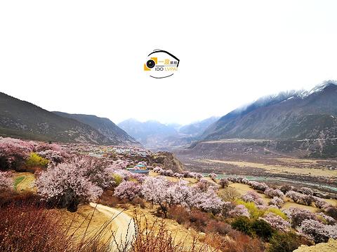 索松村旅游景点图片