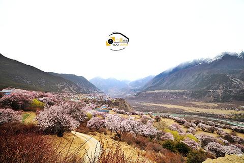索松村旅游景点攻略图