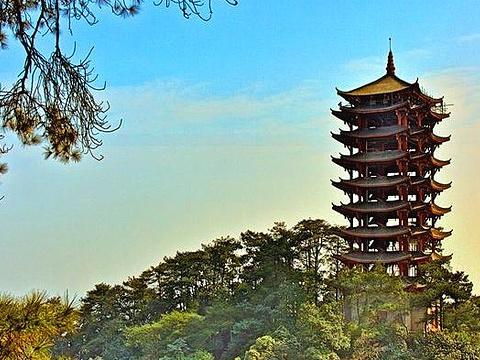 缙云山旅游景点图片