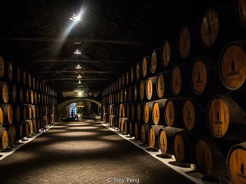Sandeman酒窖旅游景点图片