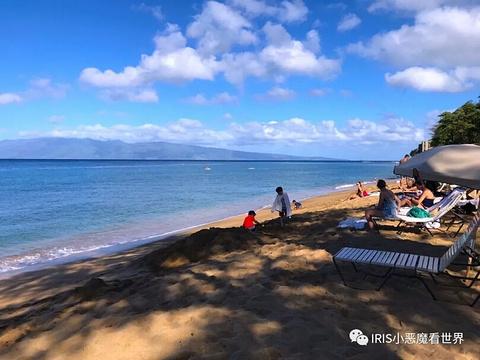 卡阿纳帕利沙滩的图片