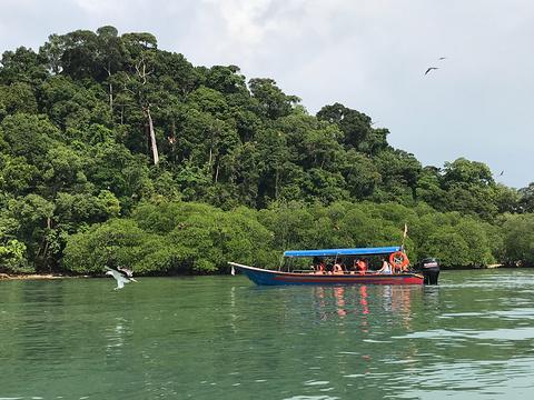 Pulau Singa Besar旅游景点攻略图