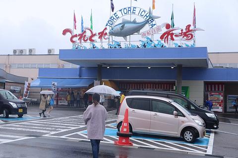 Toretore市场