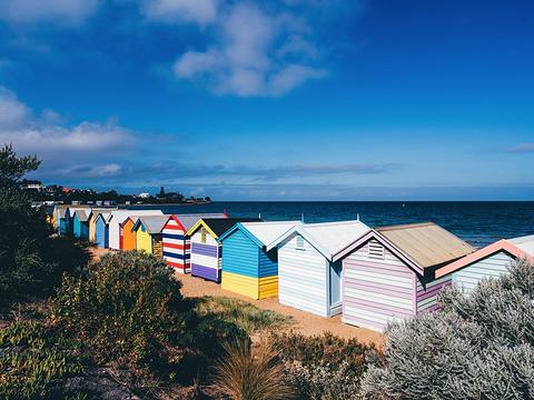 布莱顿海湾旅游景点图片