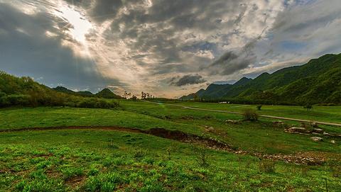 红池坝高山草场