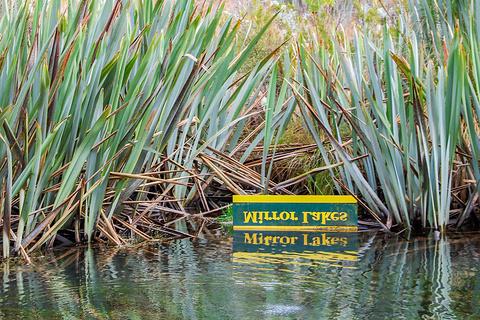 镜湖旅游景点攻略图