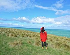 新西兰南岛|但尼丁的风、卡特林斯的浪,面朝大海的度假小屋
