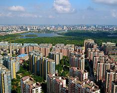 消夏茉茉茶,从上海到长春的夏日炎炎避暑休憩之旅