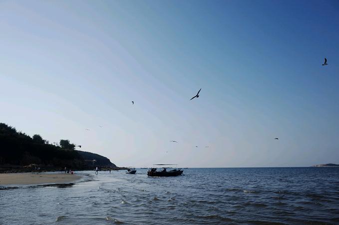金海滩国际海水浴场图片