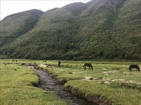 花甸坝旅游景点攻略图
