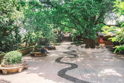 鹅岭公园旅游景点攻略图