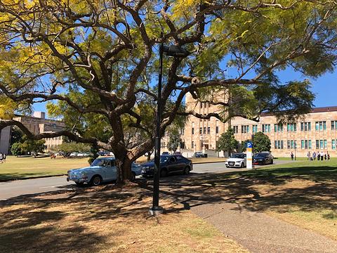 昆士兰大学旅游景点图片