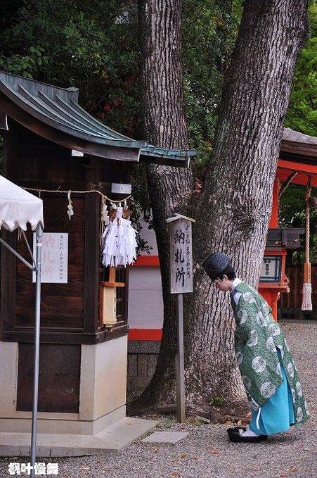 京都最后一天图片
