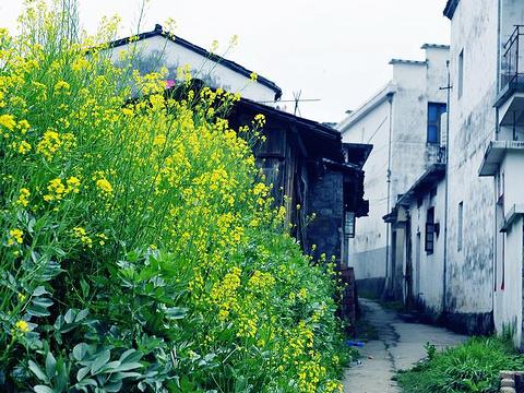 清华镇旅游景点图片