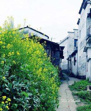 清华镇的图片