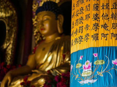 大相国寺旅游景点图片