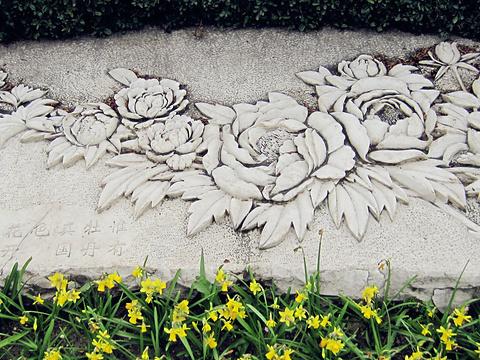 武汉植物园旅游景点图片