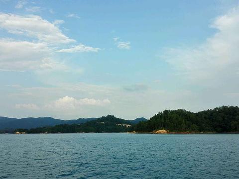 万绿湖旅游景点图片