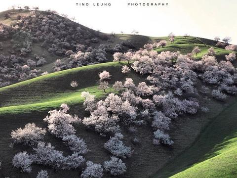 杏花沟旅游景点图片
