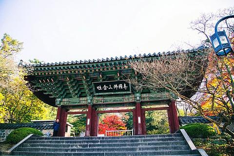 庆州旅游图片