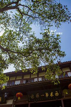 灵泉寺风景区旅游景点攻略图