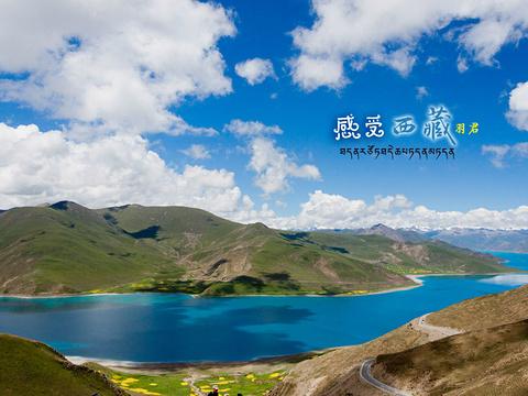 羊卓雍措旅游景点图片