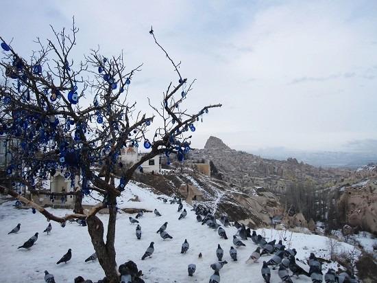 Pigeon Valley图片