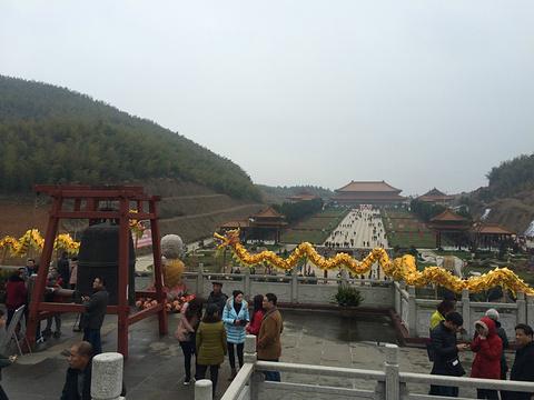大觉寺旅游景点攻略图
