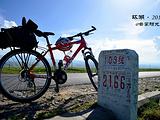 青海湖旅游景点攻略图片