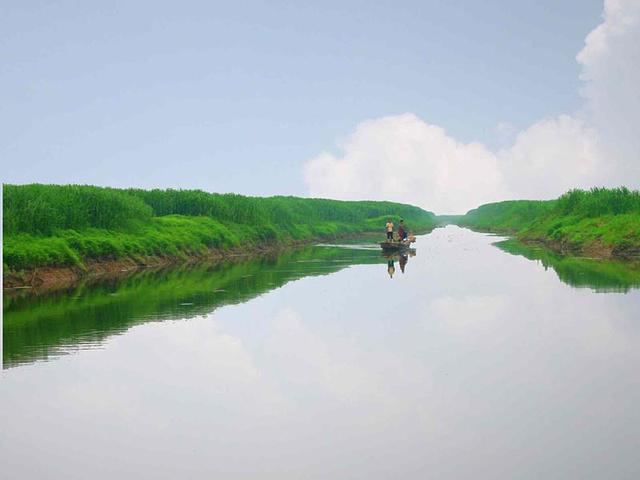 """""""在春夏之际这边鸟类资源非常丰富,仅候鸟就有158种,其中有国家一级保护动物白鹤等10种,二级保..._东洞庭湖""""的评论图片"""